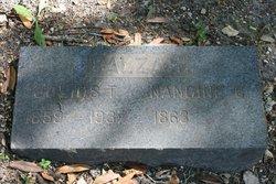 Julius T. Balzari