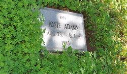 Josie Adams