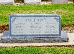 Amelia Ann <i>Calloway</i> Holland