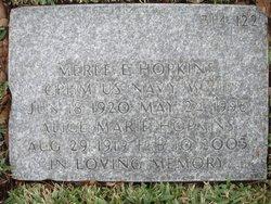 Merle Elwin Hopkins