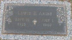 Lewis Brice Akins