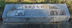 Julius A Brandt
