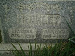 Icydora <i>Stricker</i> Beckley