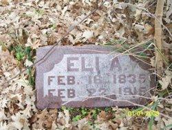 Eli A. Bartholomew