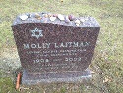 Molly <i>Seidman</i> Laitman