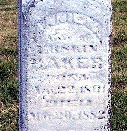 Annie N. <i>Pemberton</i> Baker