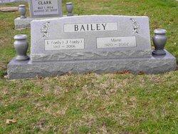 L J Pow Bailey