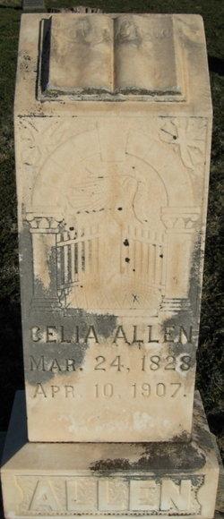 Celia Allen