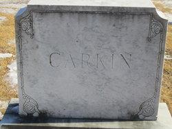 Janice Williams Carkin
