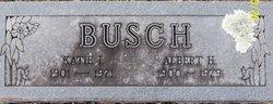 Albert H. Busch