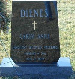 Carly Anne Dienes