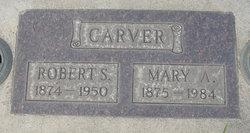Mary <i>Ackerman</i> Carver