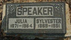 Sylvester Speaker