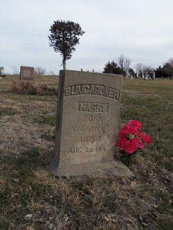 Henry Harry Bumgardner