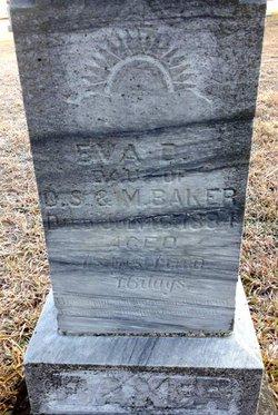 Eva D Baker