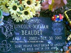 Dominic Lincoln-William Beaudet