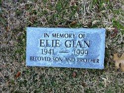 Elliot Elie Gian