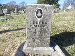 Lebora Comella