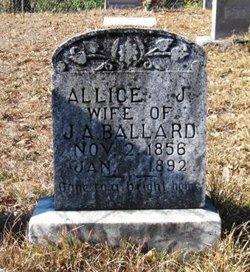 Alice J <i>Ross</i> Ballard