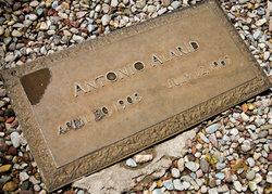 Antonio Alarid
