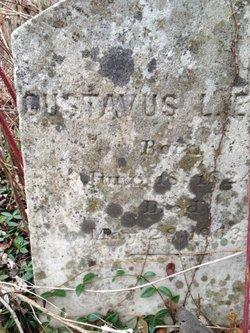 Gustavus Lafayette Elgin