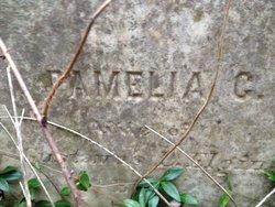 Pamelia Humphrey <i>Currell</i> Elgin