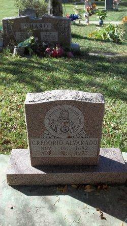 Gregorio Alvarado