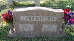 Rafael Carpinteryo