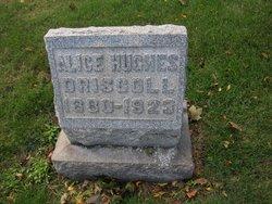 Alice <i>Hughes</i> Driscoll