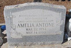 Amelia Antone