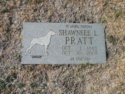 Shawnsee L Snoop Pratt