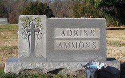 Jim Henry Adkins