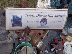 Teresa Dianne <i>Hill</i> Adams