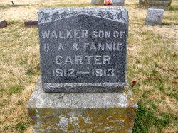 Walker Harry Carter