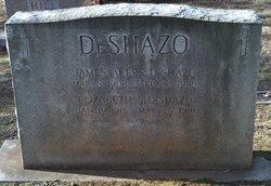 Elizabeth LeSueur <i>Scales</i> DeShazo