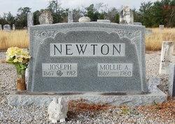 Joseph Pickens Newton
