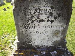 Anna A Carmin