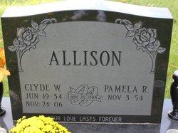 Clyde W Allison