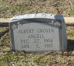 Albert Grover Angell