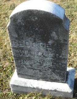 George S Walker