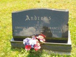 Frances C. <i>Canini</i> Andrews