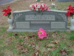 Lee O. Anderson