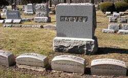 Georgie Harvey
