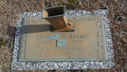 Georgie B Adams