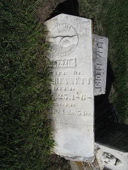 Elizabeth Jane Lizzie <i>Crawford</i> Bennett