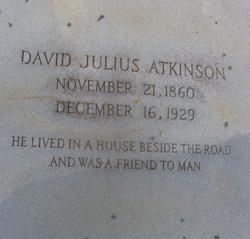 David Julius Atkinson