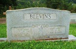 Elsie Ann <i>Heath</i> Blevins