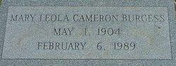 Mary Leola <i>Cameron</i> Burgess