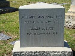 Adelaide Mantania Luce