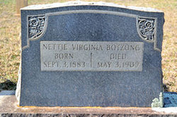Mary Virginia Nettie <i>Frye</i> Botzong
